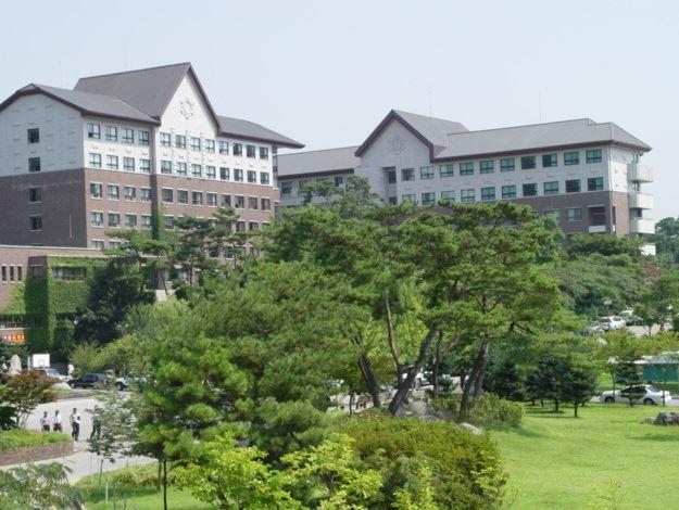 호남대학교